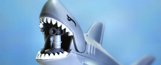 sharks and dow jones