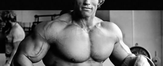 Arnold Schwarzenegger, a savvy real estate investor?